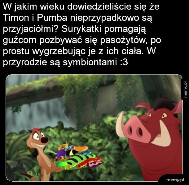 Timon i Pumba