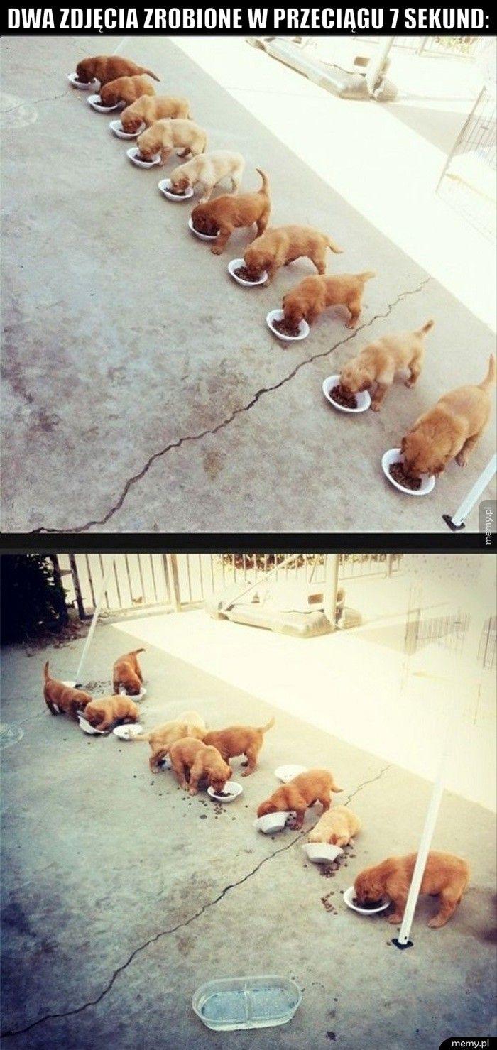 Dwa zdjęcia zrobione w przeciągu 7 sekund: