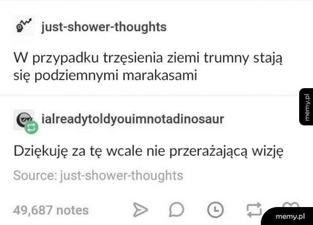 Marakasy