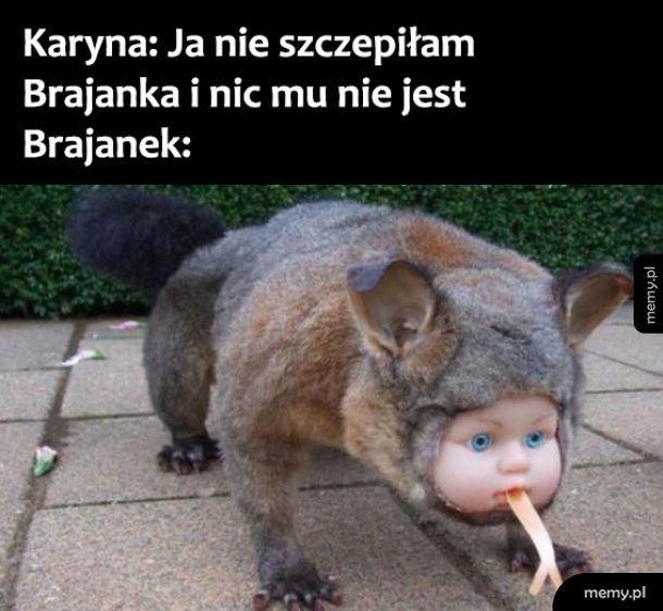 Brajanek