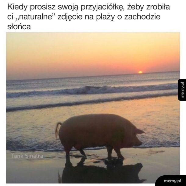 Loszki