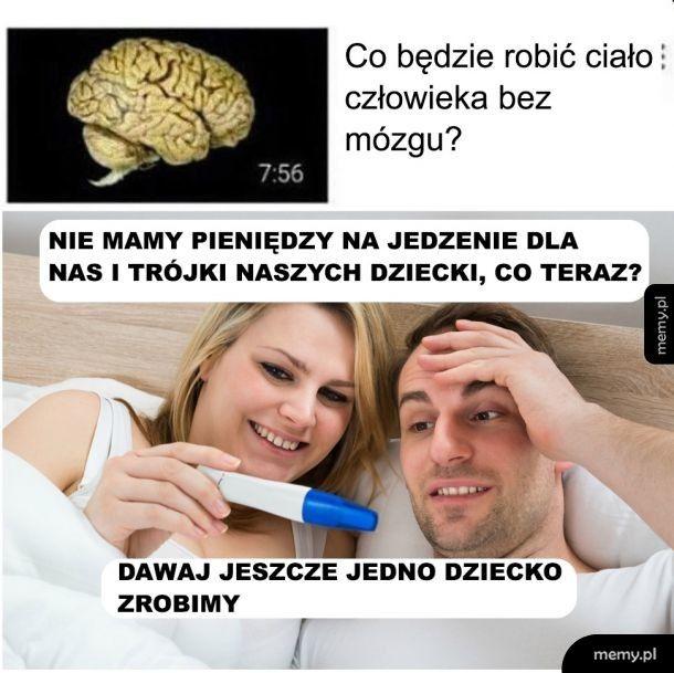 Brak mózgu