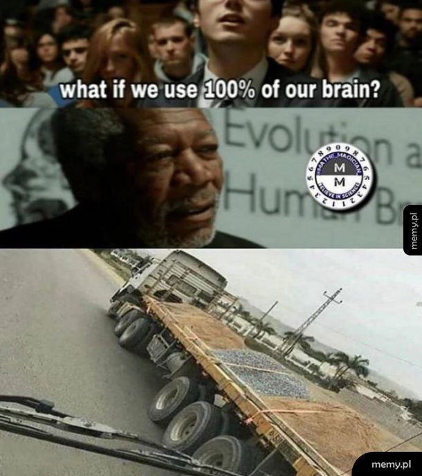 Mózg 100%