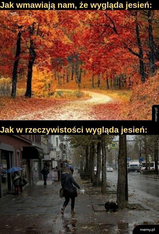 Kolory jesieni to: szary i bury
