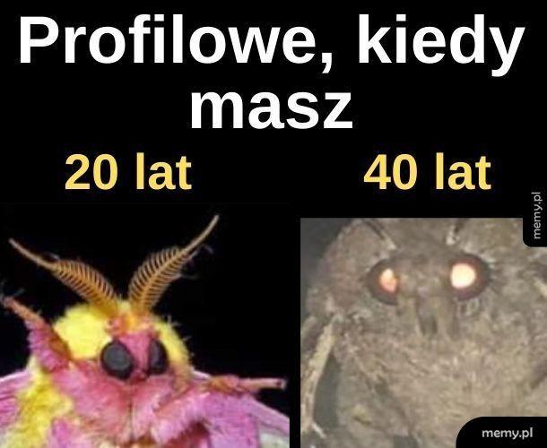 Profilowe