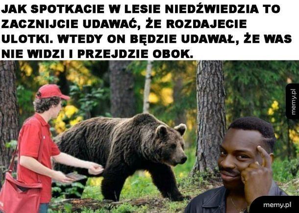 Sposób na niedźwiedzia