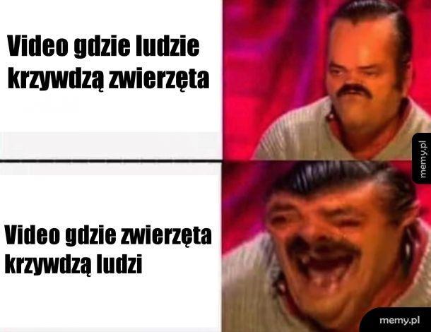 Quality Meme.