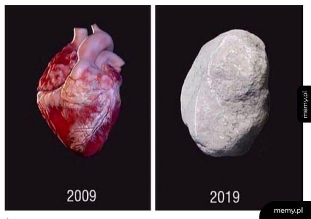 Ewolucja serca