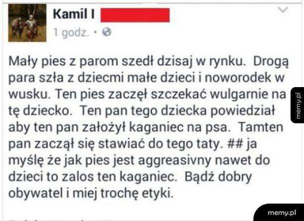 Jest jakiś tłumacz tutaj?