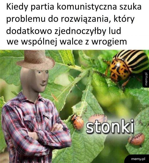 Stonki