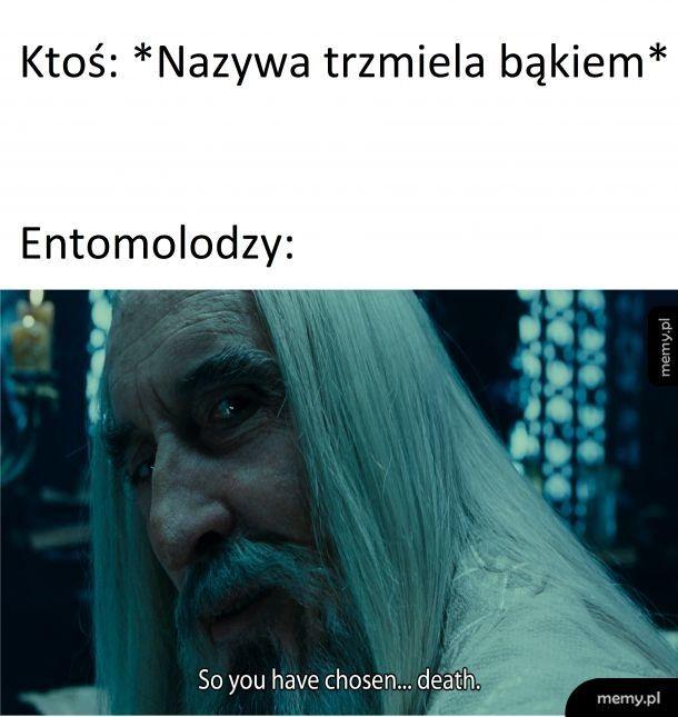 Entomolodzy to drażliwi ludzie