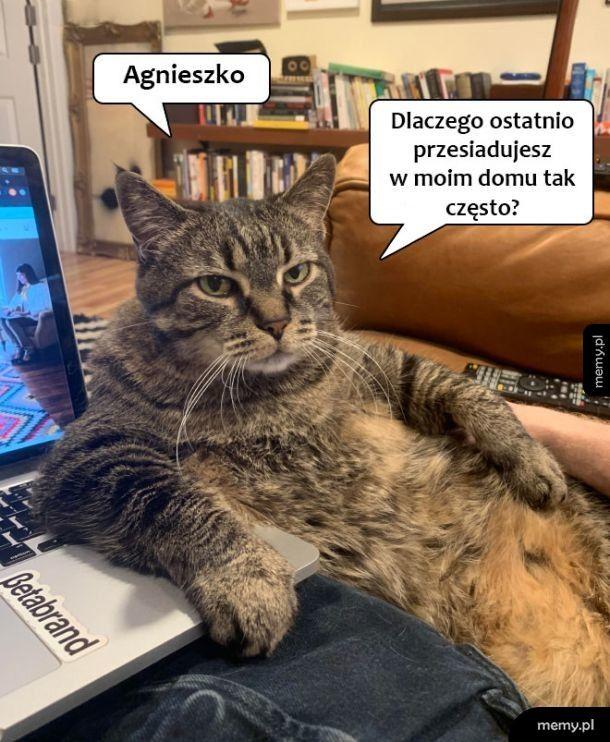 Agnieszko