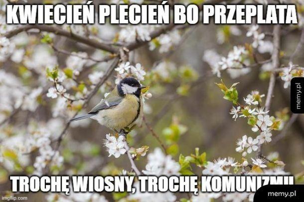 Ahhh... wiosna