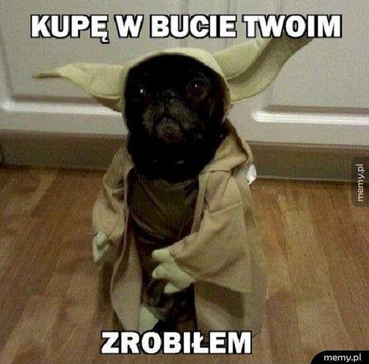 Niedobry Yoda