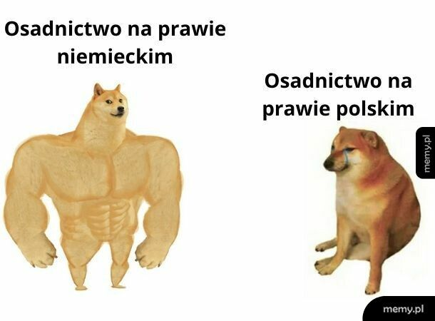 Osadnictwo