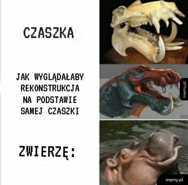 Tak samo z dinozaurami