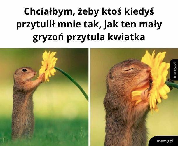 Chciałbym być tym kwiatkiem