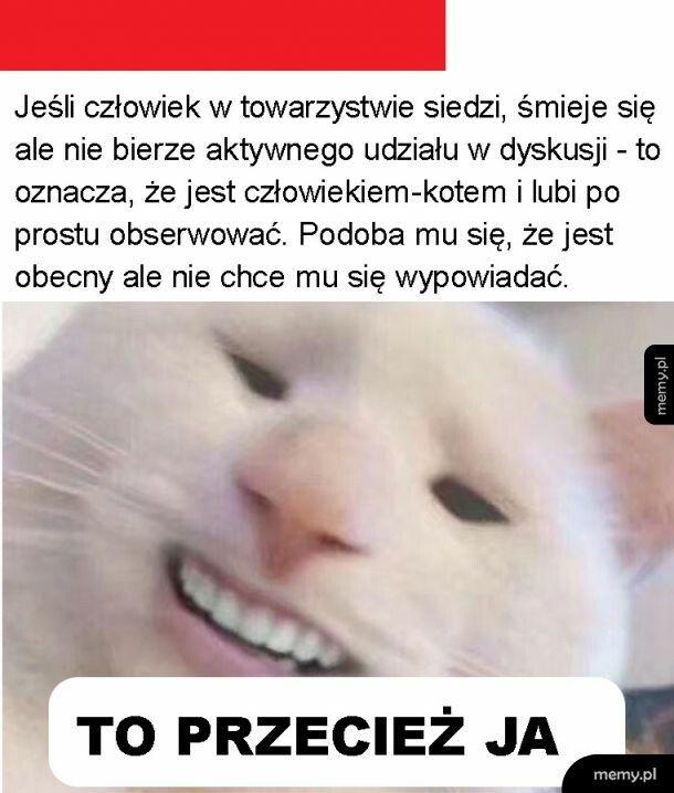 Człowiek-kot