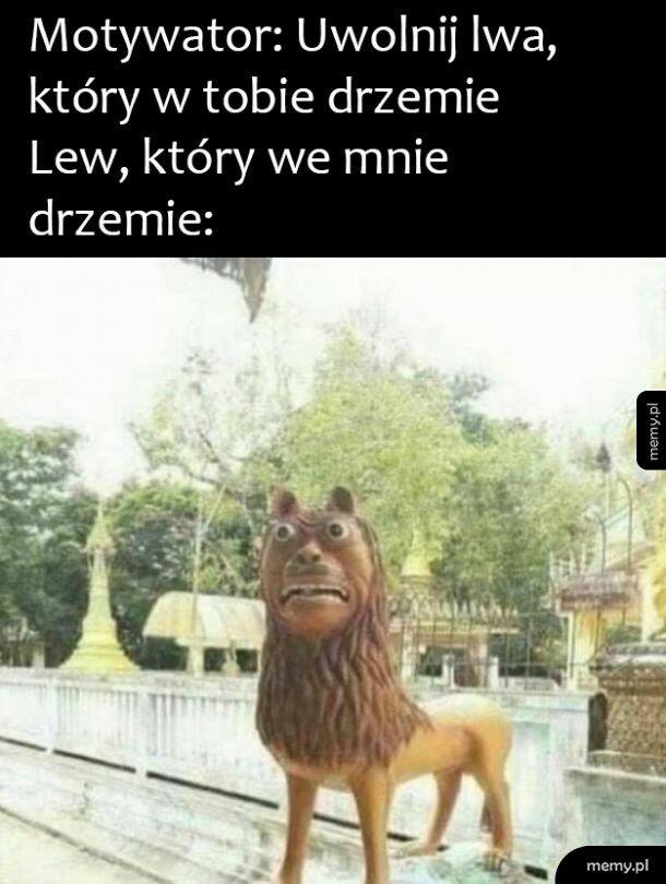 Waleczny lew