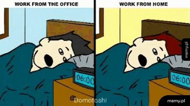 Po co pracować w biurze