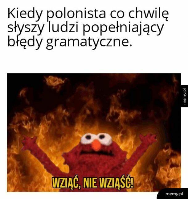 Ból każdego polonisty