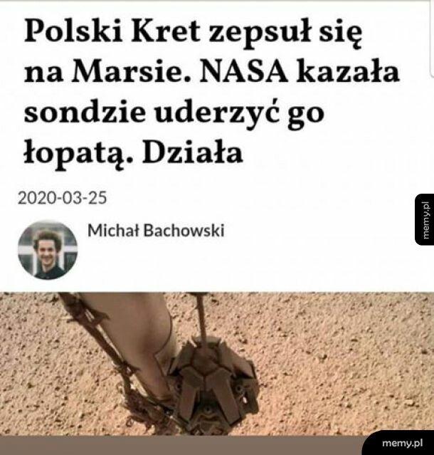 Polski kret