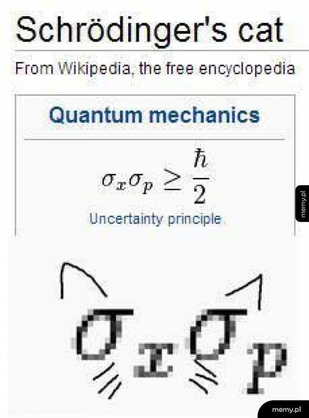 Teraz już wiecie, dlaczego kwantowy kot...