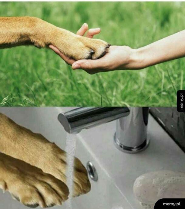 Myj się często