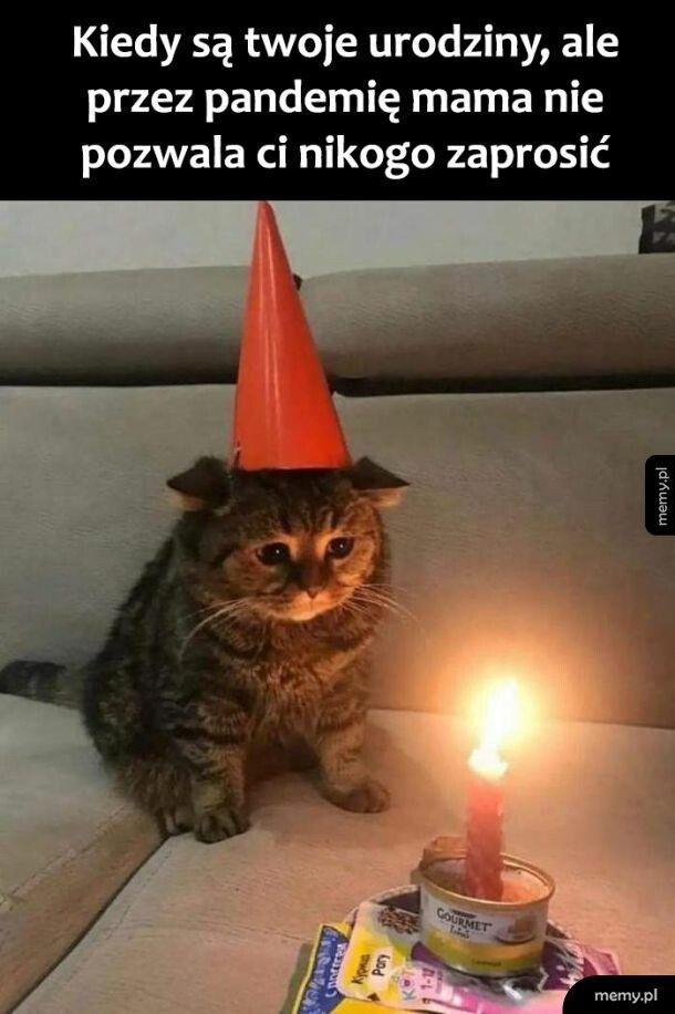 Samotne urodziny