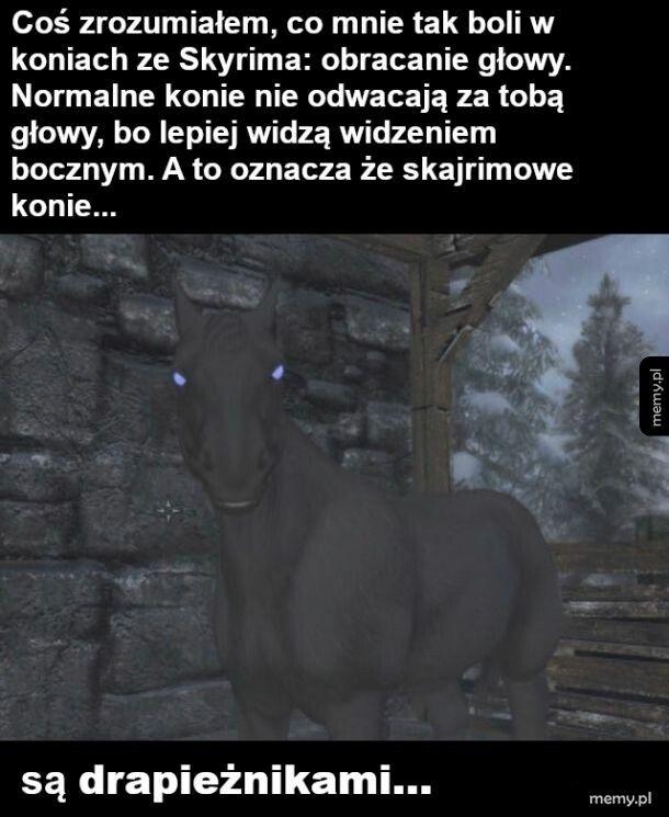 Straszne konie ze Skyrima