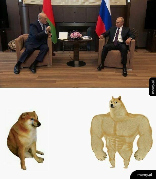 Polityka w memie