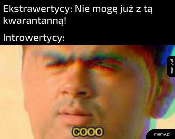 Trudy kwarantanny