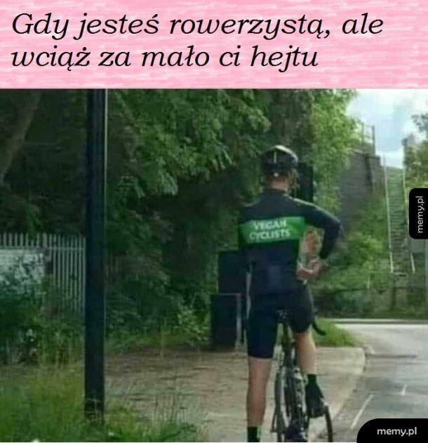 Ulubieńcy polskich dróg