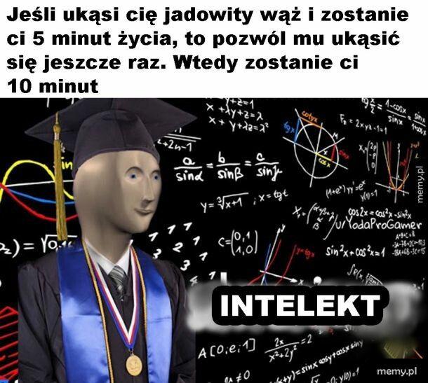 Mądrze
