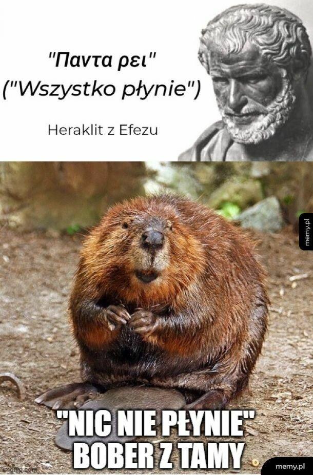 filoZOOfia