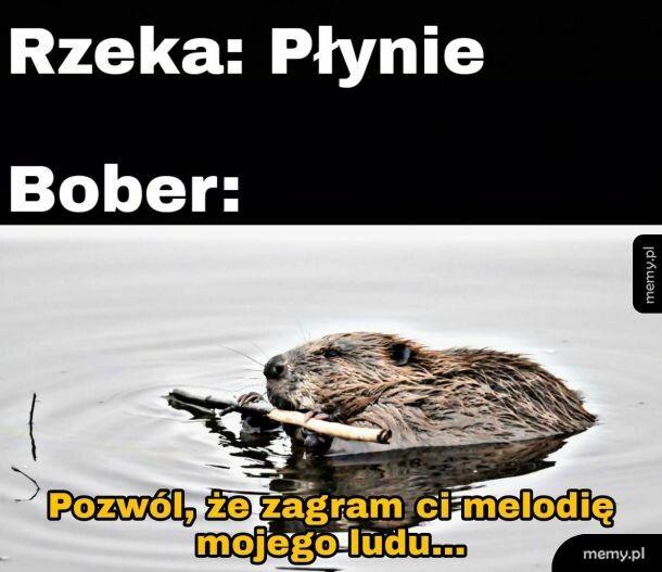 Buber...
