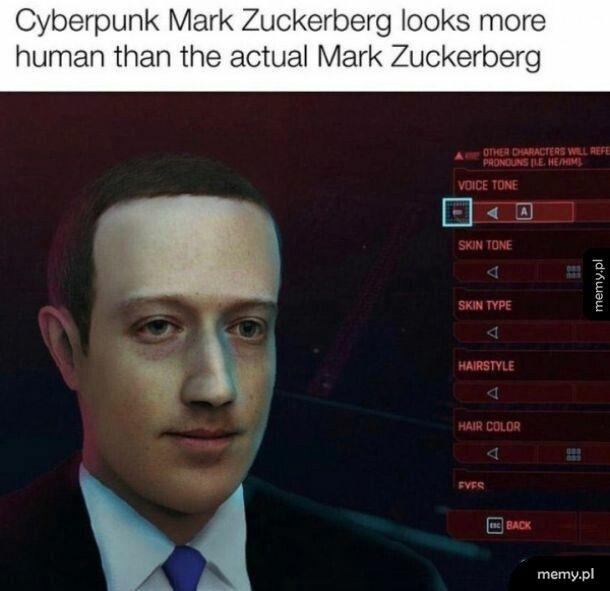 Mark Zuckerpunk
