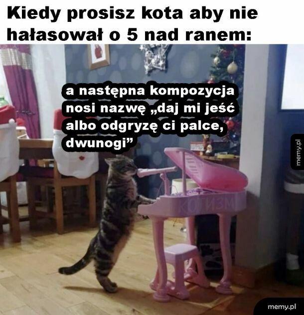 Kompozycja kota