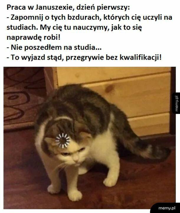 Jak być Januszem, lekcja 19 :-)