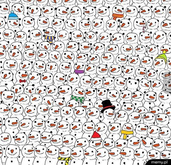 Gdzie jest panda?