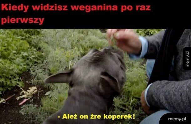 Weganin