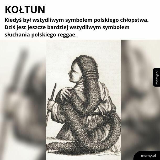 Kołtun