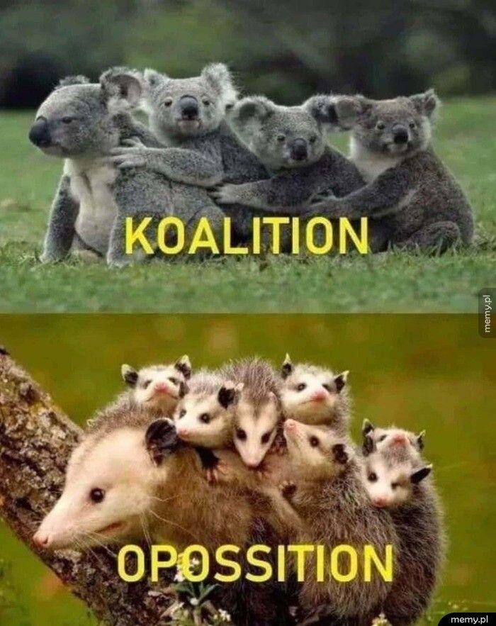 Australijska polityka :D