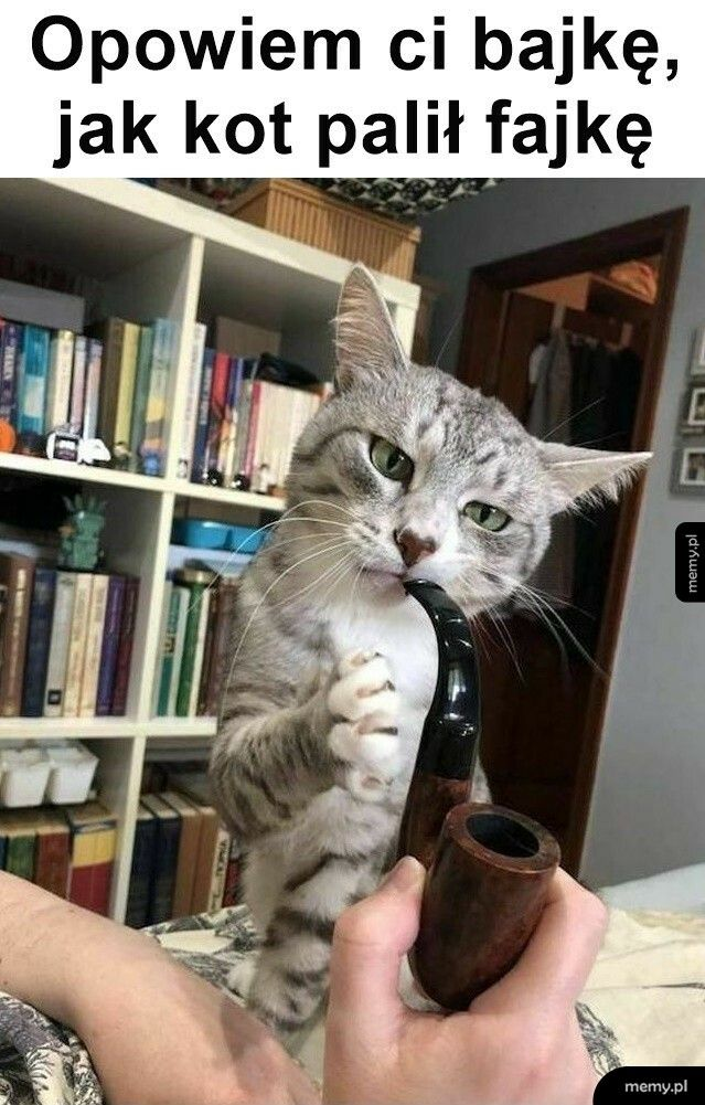 Opowiem ci bajkę, jak kot palił fajkę