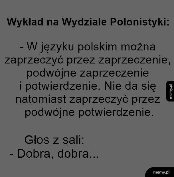 Zaprzeczenia w języku polskim