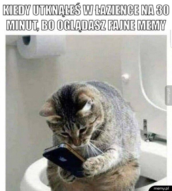 kiedy utknąłeś w łazience na 30 minut, bo oglądasz fajne memy