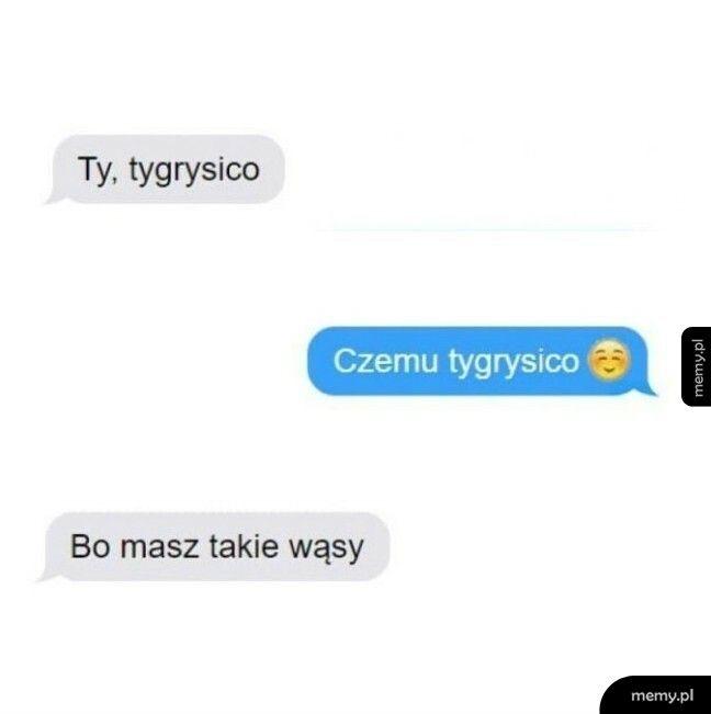 Tygrysica :D