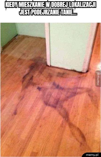 kiedy mieszkanie w dobrej lokalizacji jest podejrzanie tanie...