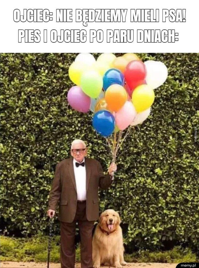ojciec: nie będziemy mieli psa!