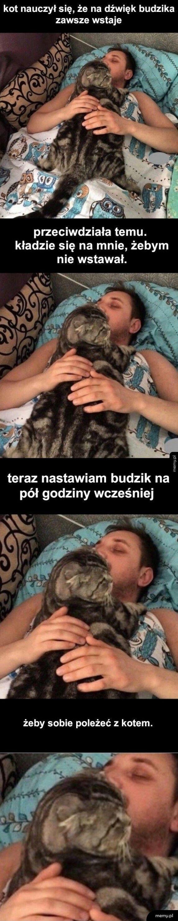 Dla kota wszystko :D